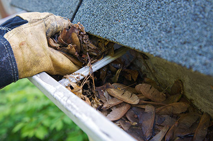 gutter_cleaning_service